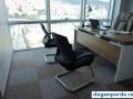 ofisim istanbul - karo halı
